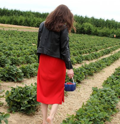 Picking, Strawberry Fields Forever