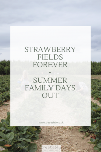Strawberry Picking - Summer activities for families